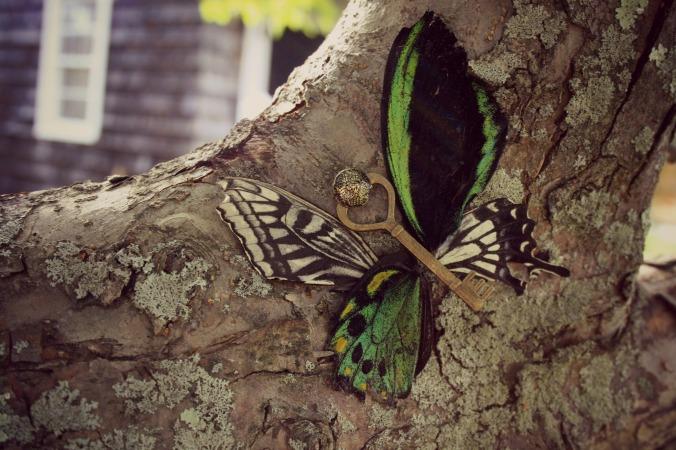 ButterflyKey